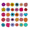 painted flowers are handmade vector image vector image