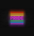 rainbow neon lgbt flag concept vector image