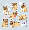 set of cute pug pupies for stickers pins vector image vector image