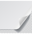 Sheet of paper with curved corner vector image vector image