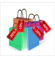 shopping bags with discount labels vector image