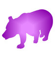 silhouette of brown bear abstraction of violet vector image vector image