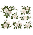 white rose boutonniere set vector image vector image