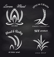 grains product label on chalkboard vector image