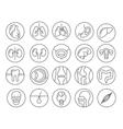 Human organs line icon set vector image vector image