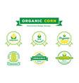 organic corn guarantee badge design set vector image vector image