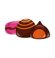 sweet candies chocolate chip macaron vector image