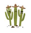 three cute cartoon saguaro cactus in sombrero vector image vector image