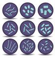 arrangements of green bacillus bacteria