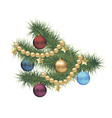 Christmas pine tree branch vector image vector image