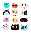 collection different portraits cats vector image