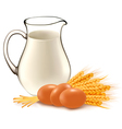 glass jug with milk wheat seeds and eggs vector image
