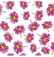 pyrethrum daisy seamless pattern on white vector image