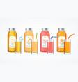 realistic detailed 3d color full juice bottle set vector image