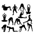 stretching and exercise silhouettes vector image vector image