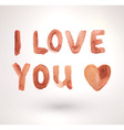 Valentines Day Sign vector image vector image