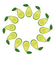 wreath from half avocado heart with space vector image vector image