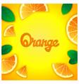 Fruity orange background vector image