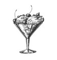 glass with fruit scoop ice cream vintage vector image vector image