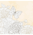 hand drawn with peony and butterfly vector image vector image