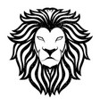 lion head logo animal mascot vector image