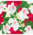 seamless texture flowers red and white vector image vector image