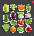 set icons of fresh vegetables vector image