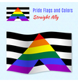 Straight Allies pride flag with correct color vector image vector image