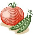 Tomato and peas vector | Price: 1 Credit (USD $1)
