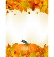 Colorful autumn card leaves with Pumpkin EPS 8 vector image vector image