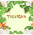 seamless texture frame bouquet with tropical vector image