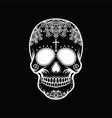 white skull on a black background vector image