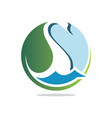 nature swan vector image