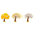 autumn tree yellow leaves fall trees with fallen vector image