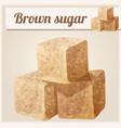 brown sugar detailed icon vector image vector image