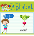 Flashcard letter R is for radish vector image vector image