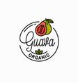 guava fruit logo round linear guava slice vector image vector image