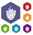 raspberry or blackberry icons set hexagon vector image vector image
