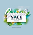 summer sale design with flower and exotic palm vector image vector image