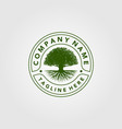 vintage trees logo design vector image vector image