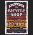 bicycle or bike shop city transport vector image