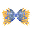 butterfly two wings vector image vector image