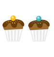 chocolate muffins cartoon vector image