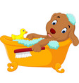 cute dog bathing time vector image