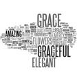 graceful word cloud concept vector image vector image
