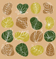 leaf line icon set leaves - plant elements icons vector image vector image