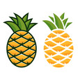 pineapple icon two types for your vector image