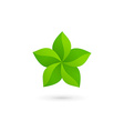 Abstract star eco leaves logo icon design template vector image