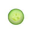 cucumber isolated slice fresh icon food green vector image