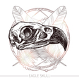 Eagle Skull Hand Drawn vector image vector image